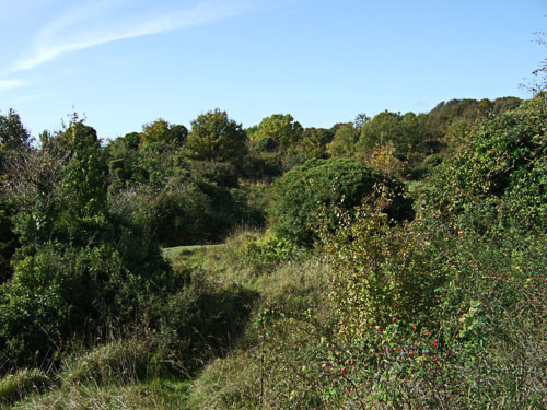 An October view of the disused Chalkpit